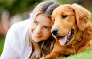 Pets, Animals, dogs, companionship